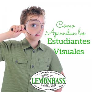 Cómo Aprenden los Estudiantes Visuales