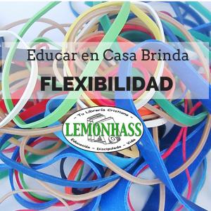 Educar en casa brinda Flexibilidad