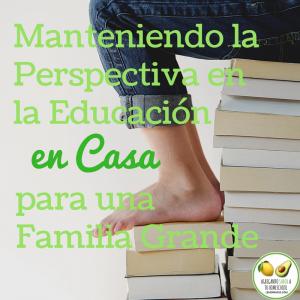 perspectiva en la educación en casa para una familia grande